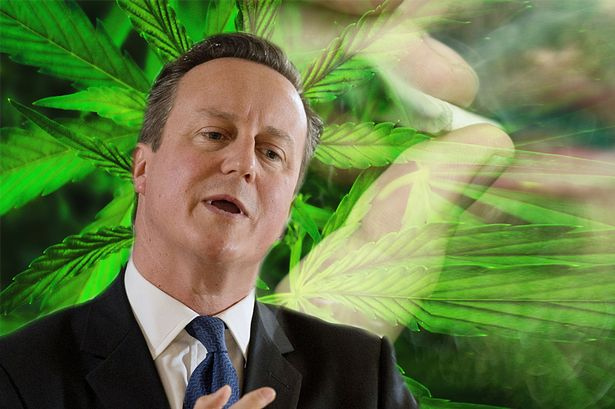 Tories demolish 200,000-strong petition to legalise cannabis before it's even debated