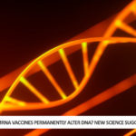 Can mRNA Vaccines Permanently Alter DNA? New Science Suggests They Can!