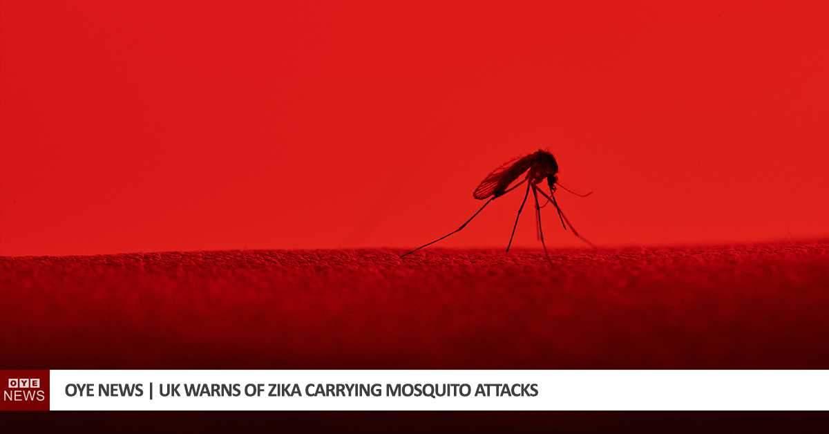 UK Warns of Zika Carrying Mosquito Attacks